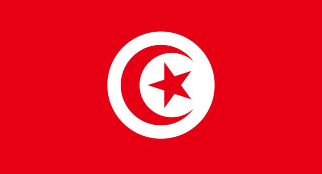 wet huiselijk geweld tunesie