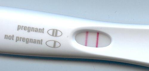 abortus prolife